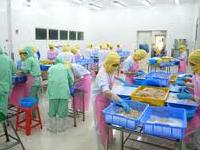 ロータスフード加工食品工場