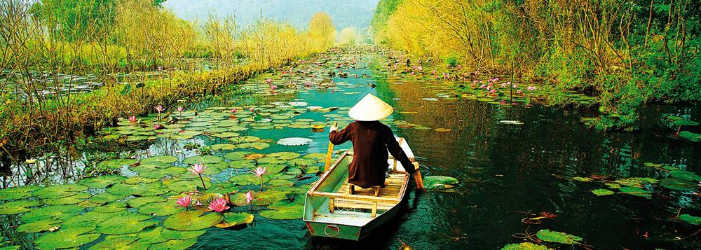 ベトナムについて